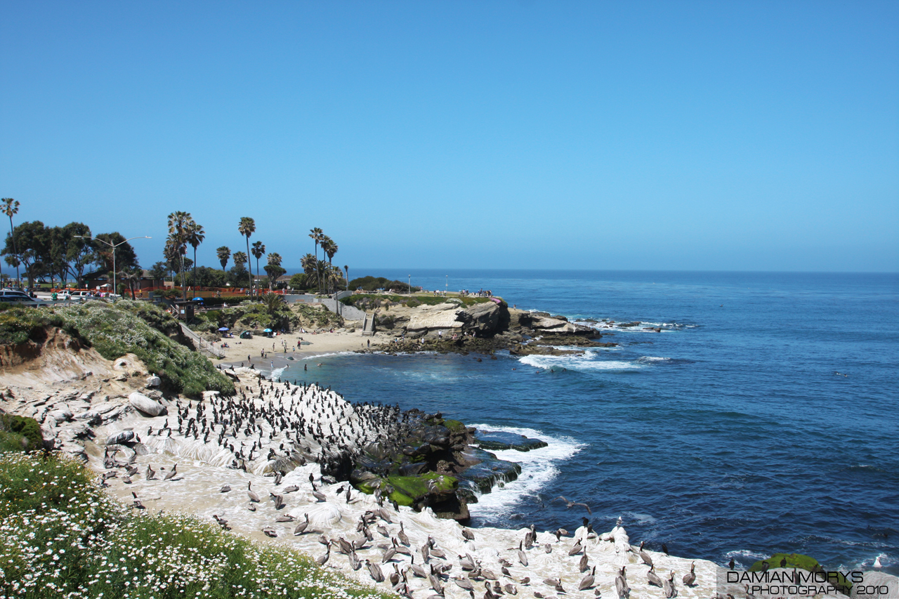 La Jolla Weather Monthly Averages More Lajolla Com