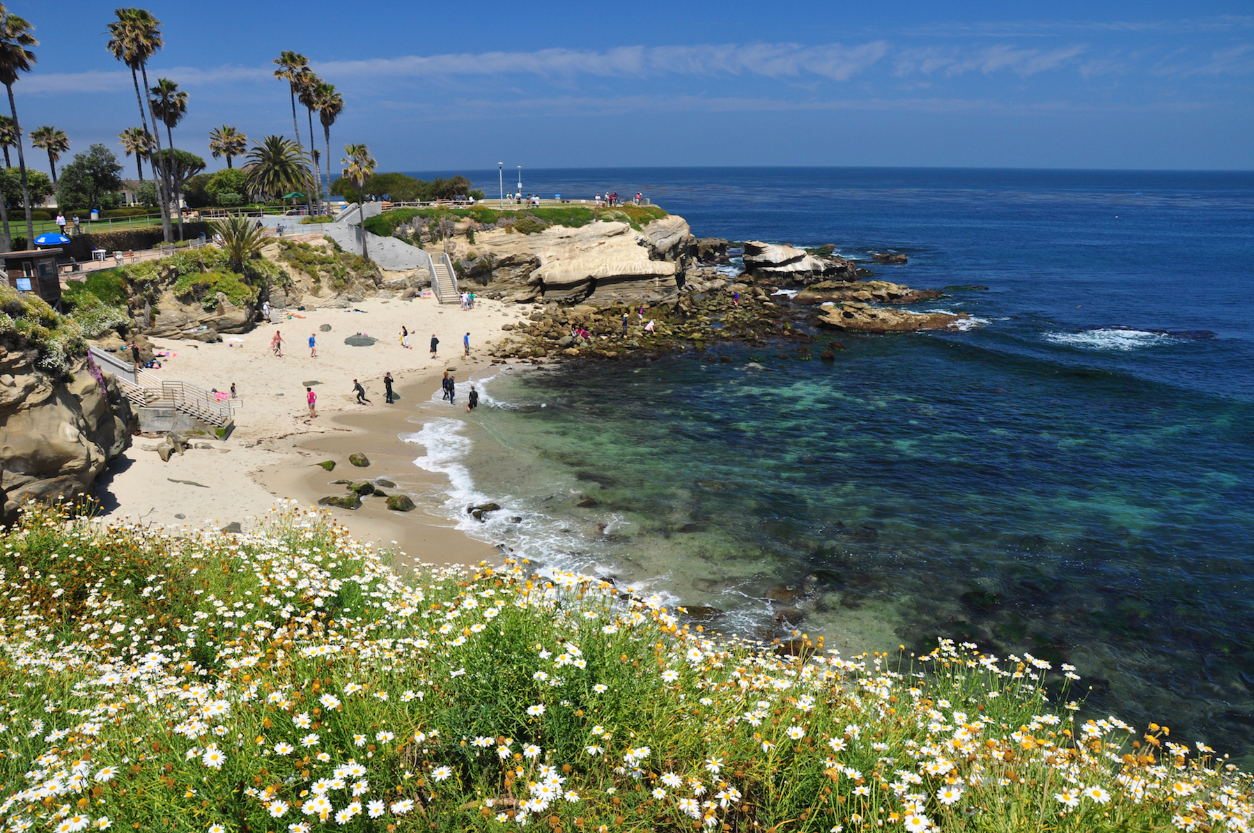 things to do in la jolla