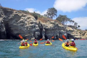 Kayaking In La Jolla Everything You Need To Know