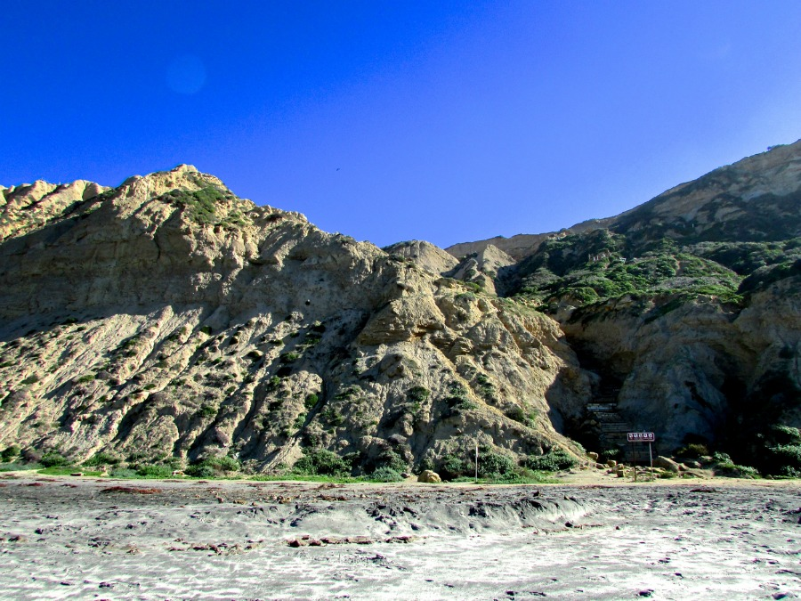 Blacks Beach in San Diego: 8 Things You May Not Know | La