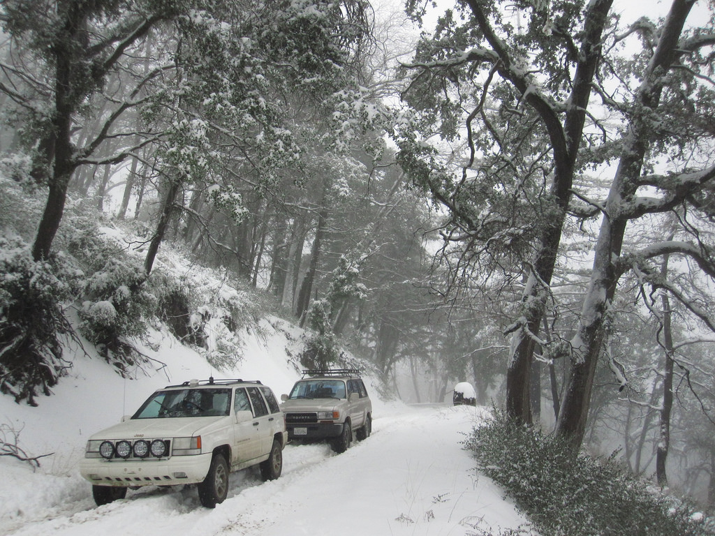 Where to Find Snow in San Diego County   LaJolla com