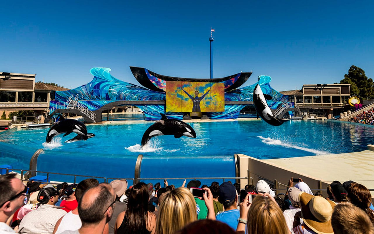 Get Discounted Tickets For San Diego Activities Lajolla Com