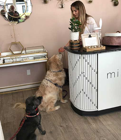 Dog getting treats in Mimi and Red in Birdrock
