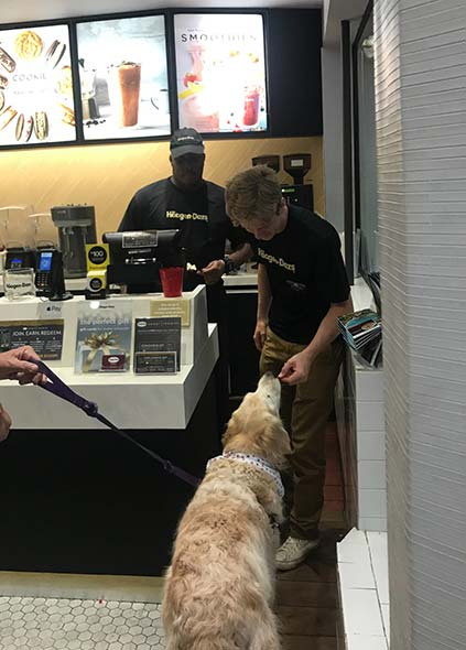 Haagen Dazs Ice cream shop is dog friendly