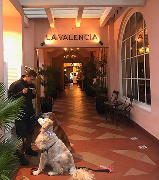 La Valencia Valet