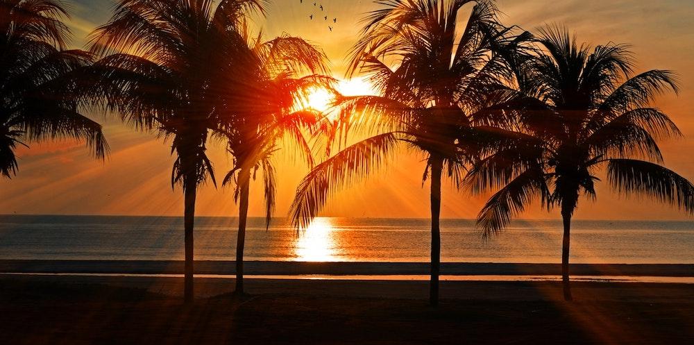 The beach is where you'll find stars like Milana Vayntrub